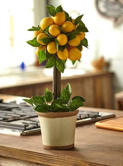 Vicky Yao Faux Floral -Lemon Ball Topiary Silk Arrangement - Vicky Yao Home Decor SEO