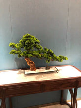 画像をギャラリービューアに読み込む, Vicky Yao Faux Plant - Exclusive Design Stone Modeling Artificial Bonsai L60cm Gift For Him