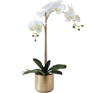 Vicky Yao Faux Floral - Real Touch Artificial Orchid Flower Arrangement Golden Pot