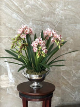 Load image into Gallery viewer, Vicky Yao Faux Floral - Exclusive Design Artificial Cymbidium Orchids In Deer Pot Flowers Arrangement