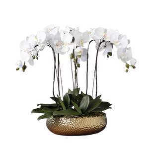 Vicky Yao Faux Floral -Handmade Exclusive Design Real Touch Artificial Orchids In Pot 6Stems Coffee Table