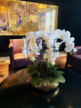 Load image into Gallery viewer, Vicky Yao Faux Floral -Handmade Exclusive Design Real Touch Artificial Orchids In Pot 6Stems Coffee Table