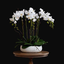 画像をギャラリービューアに読み込む, Vicky Yao Faux Floral -Handmade Exclusive Design Real Touch Artificial Orchids In Pot 6Stems Coffee Table