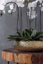 画像をギャラリービューアに読み込む, Vicky Yao Faux Floral -Real Touch Butterfly Orchid With Golden Pot - Vicky Yao Home Decor SEO