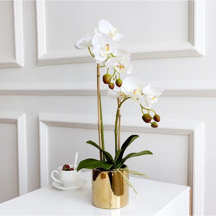 Vicky Yao Faux Floral -Real Touch Small 2 Stem of Butterfly Orchid Golden Pot - Vicky Yao Home Decor SEO