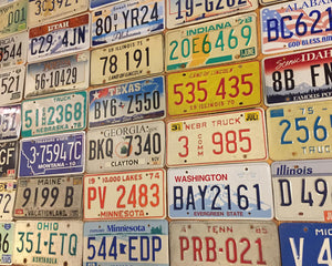 Starter pack of 10 state license plates