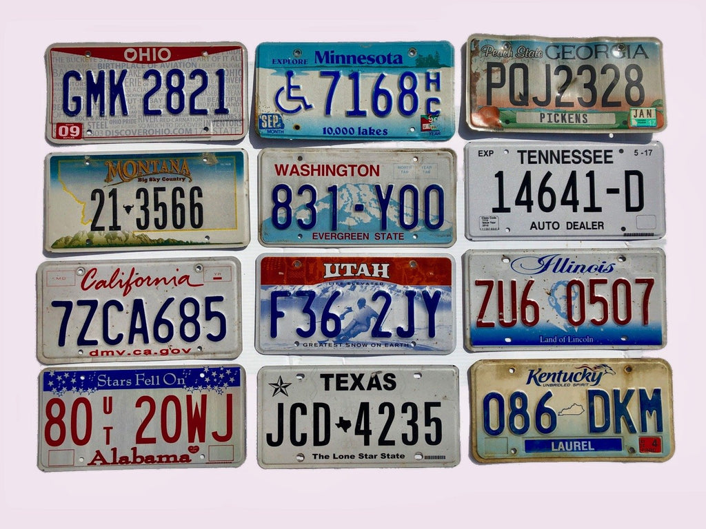 12 Pack of License Plates From 12 Different States in Craft Condition