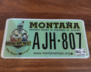 Montana Granting Wishes to Montana's Ill Children License Plate