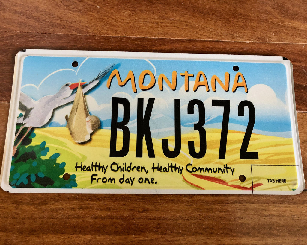 Montana Healthy Children License Plate