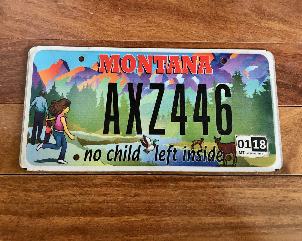 Montana No Child Left Inside License Plate