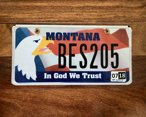 Montana In God We Trust License Plate