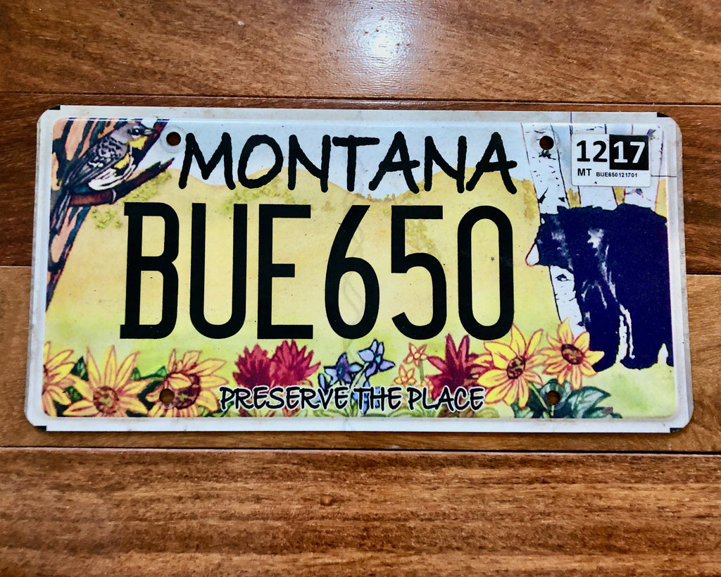 Montana Preserve the Place License Plate
