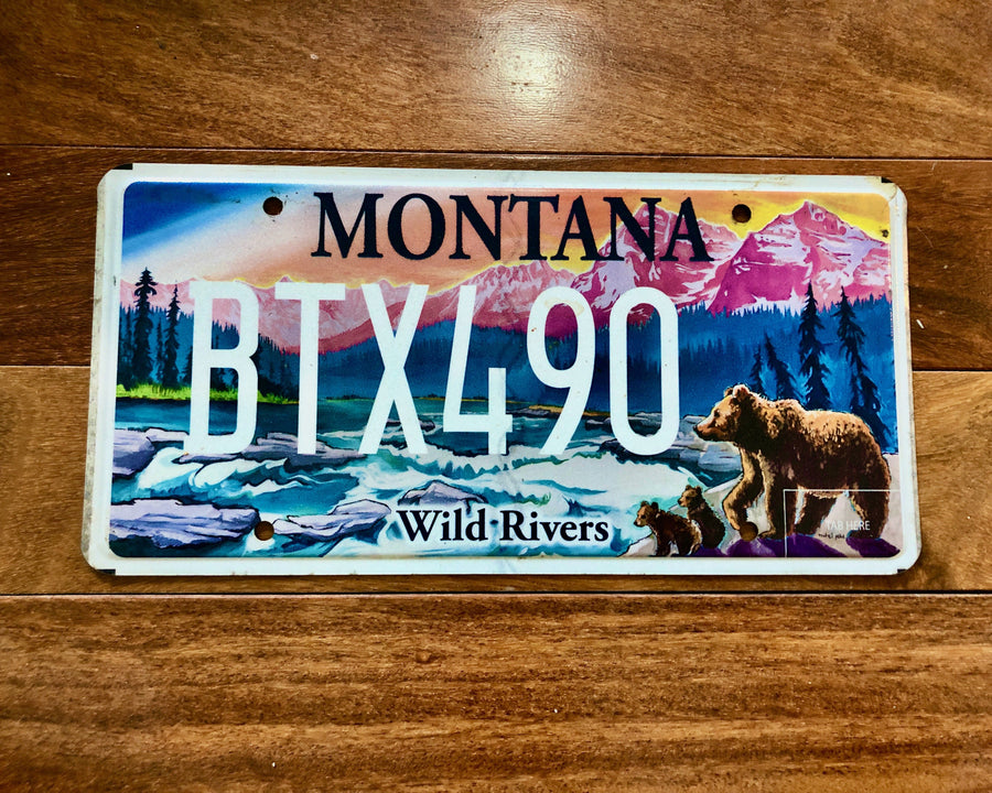 Montana Wild Rivers License Plate