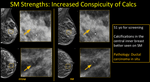 2-D Mammography Synthesized from Tomosynthesis: Strengths, Pitfalls, Artifacts