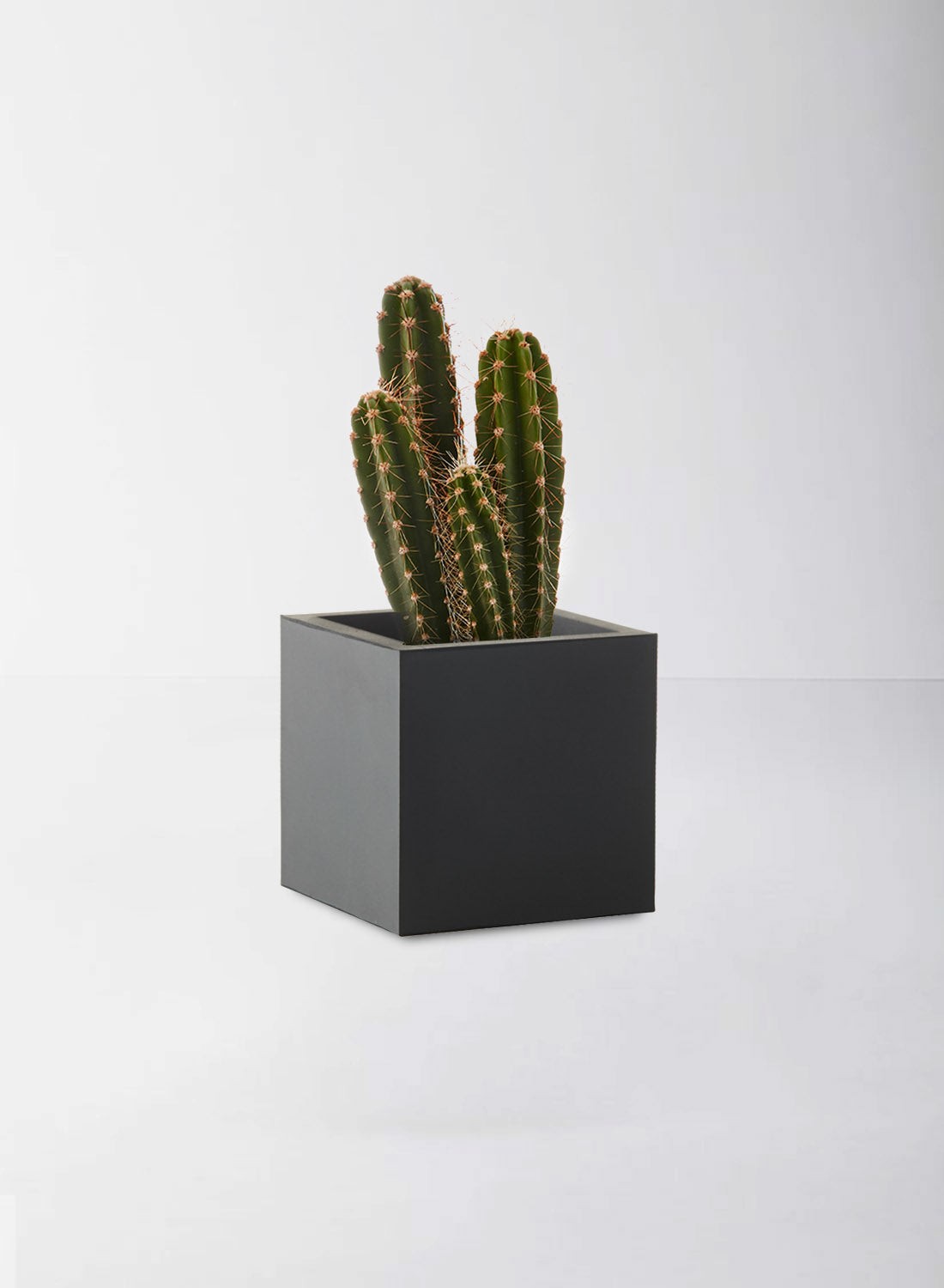 black square rubber pot