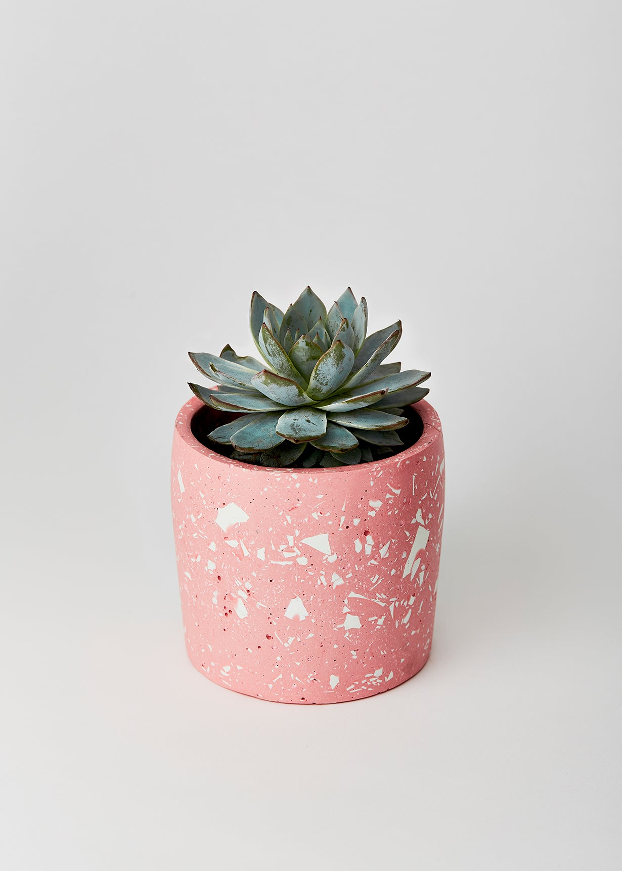 pink and white terrazzo planter