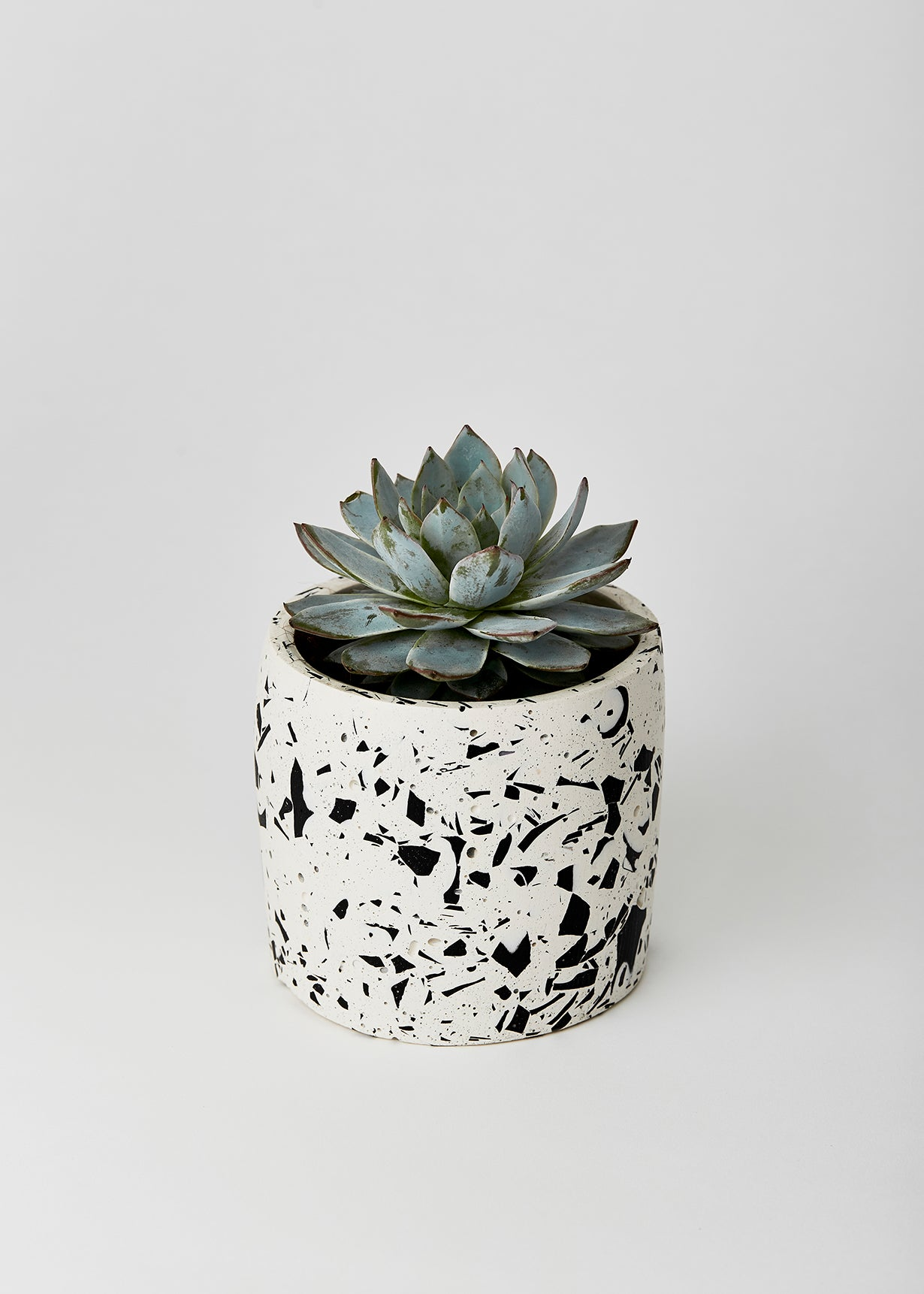 white and black terrazzo planter