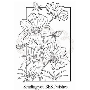 Cosmos Collection Clear Stamp Set