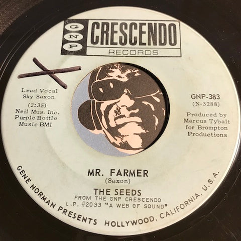 Seeds - Up In Her Room b/w Mr. Farmer - GNP Crescendo #383 - Garage Rock