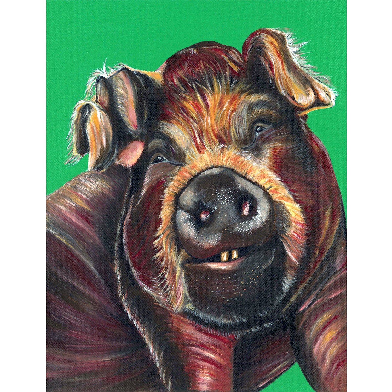 Pig painting- acrylic on canvas with a green background. Bella is a pig that lives at Loving Farm Animal Sanctuary in California
