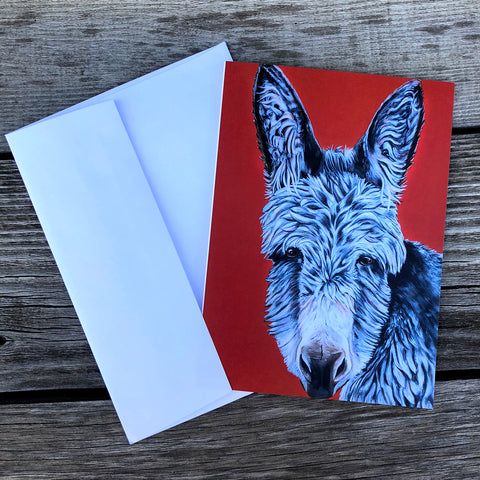 Donkey greeting card- bright red background. Elvis is a donkey that lives at the Isle of Wight Donkey Sanctuary in England