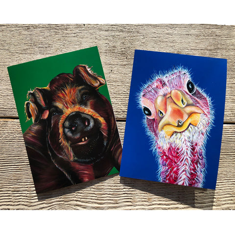 Set of 2 rescued farm animal cards, a pig and a turkey that live at Loving Farm Animal Sanctuary in California