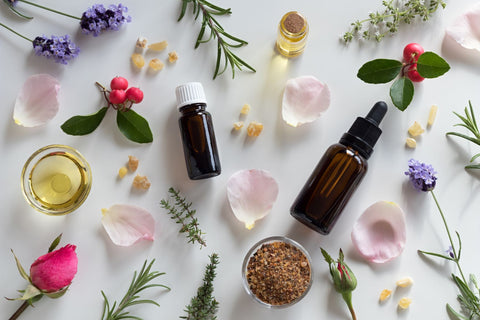 Other essential oils for fighting bed bugs