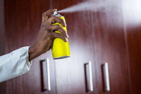 Contact pest control to get rid of bed bugs, hand spraying pestizide