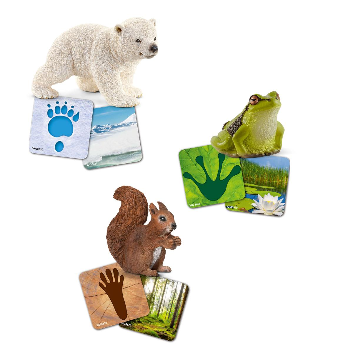 Wildlife with Flash Cards (Schleich)