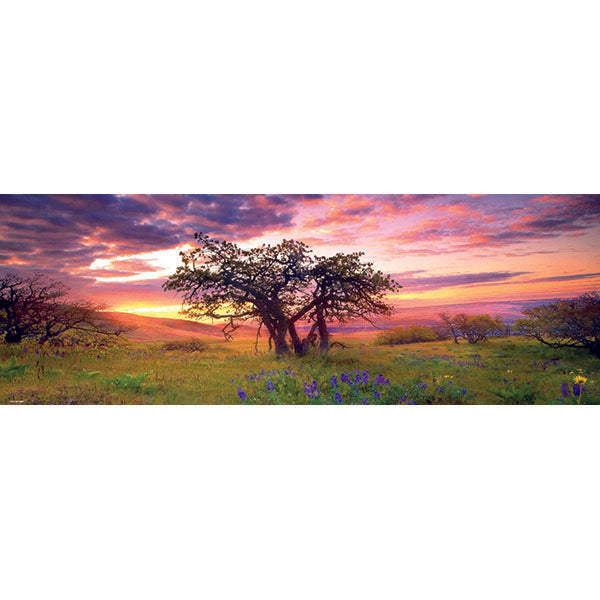 Oak Tree Panorama (2000pc Heye)