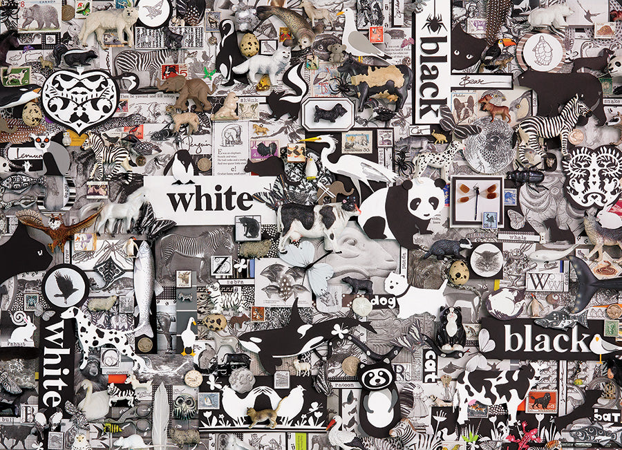Black and White: Animals