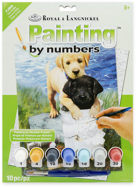 Paint by Number (Standard)