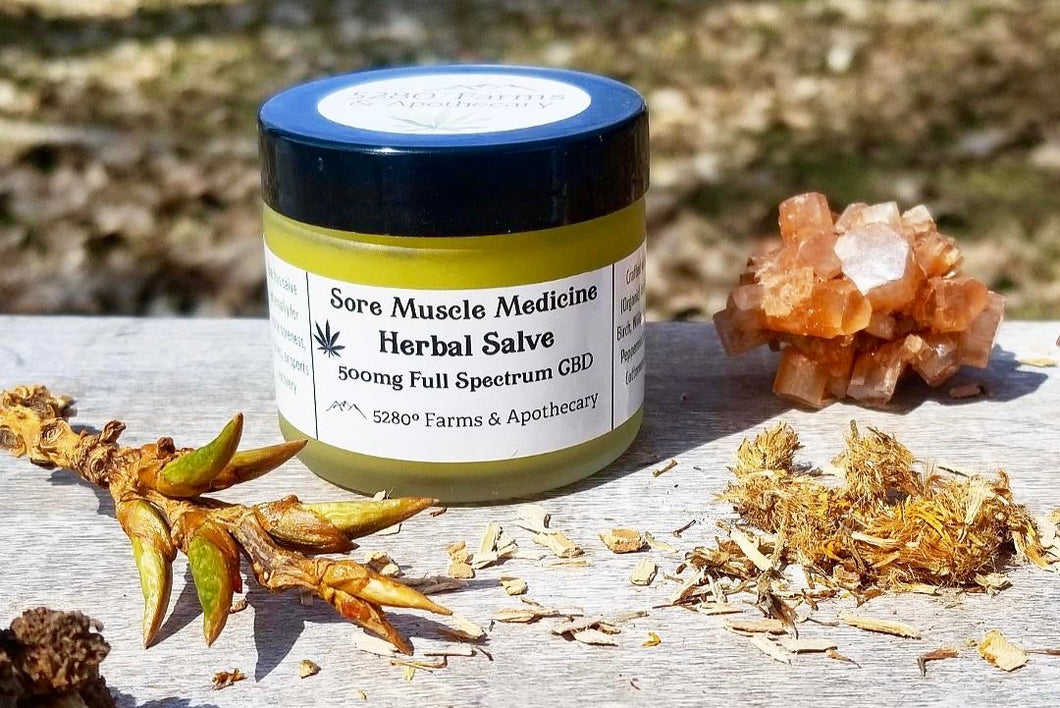 Sore Muscle Medicine - CBD Salve 500mg