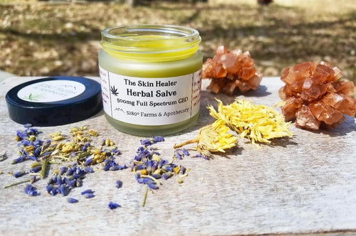 The Skin Healer - CBD Salve 500mg