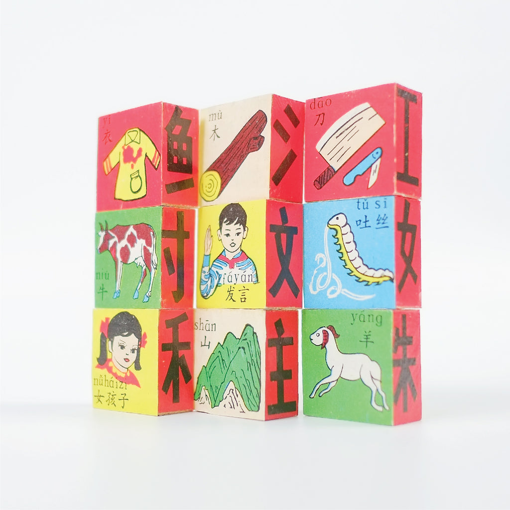 Vintage Chinese Characters Wooden Learning Blocks