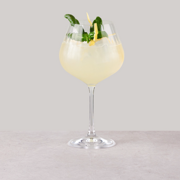 apple-juice-and-gin-non-alcoholic-botaniets-gingerbeer-mocktail