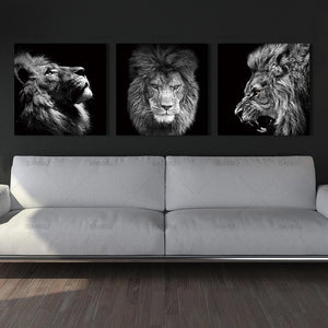 Black and White Lion Canvas Art - Endangered Beauties LLC
