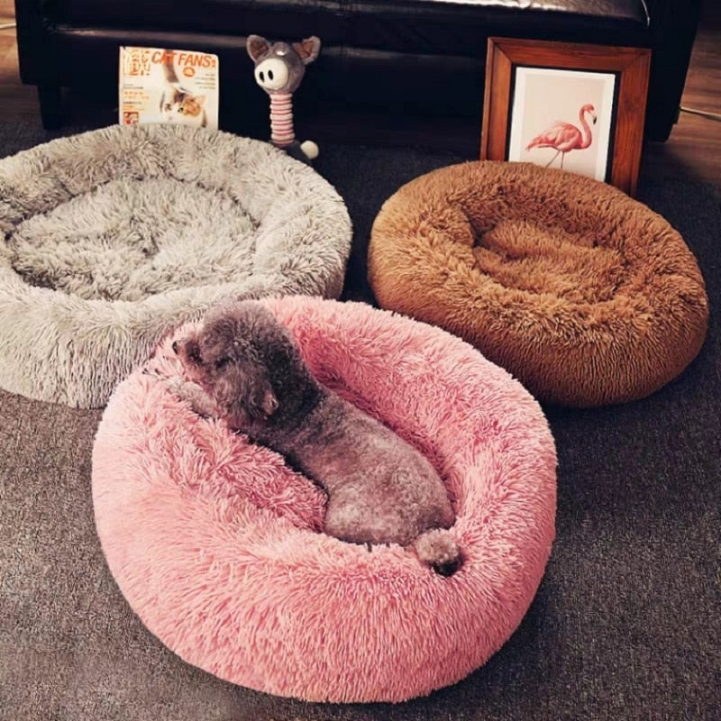 Round Beds For Pets
