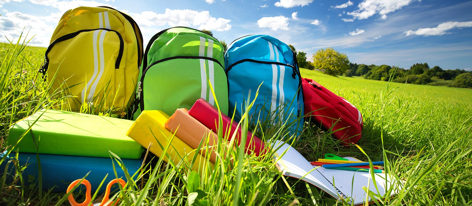 Backpacks and school supplies on the grass on a sunny day