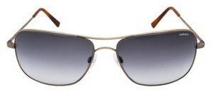 The Randolph Archer in Gray Gradient lenses and Bronze Oxide frames.