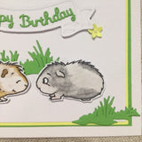 Guinea Pig Birthday Card / Handmade Card / Guinea Pig Gifts - Little Bun Designs UK