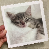 Kitten Card / Greeting Card / Personalised for any Occasion - Little Bun Designs UK