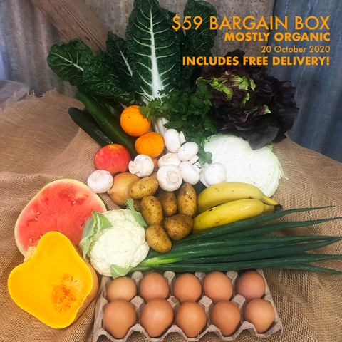 Our $59 Bargain Box