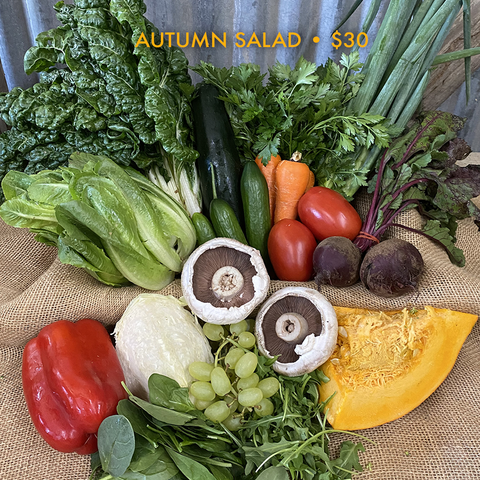 Autumn Salad Box