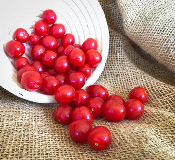 Cherry Tomatoes : Punnet