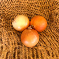 Onions, Brown