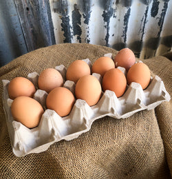 Free Range Eggs : Jumbo tray of 10
