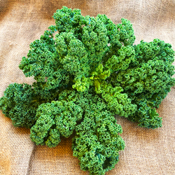 Kale, Green Curly : Farm Fresh Organic