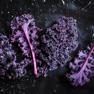 Kale, Purple Curly : Farm Fresh Organic