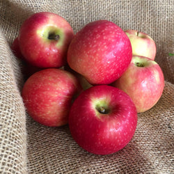 Apples, Pink Lady : KG